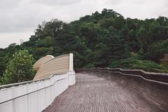 Henderson Waves Bridge (bortescristian) Tags: park city trip bridge holiday canon photography singapore waves pedestrian southern trail february henderson cristian singapur metropol ridges singapura シンガポール 2015 סינגפור 新加坡 싱가포르 bortes சிங்கப்பூர் bortescristian cristianbortes ประเทศสิงคโปร์ сингапур 亨德森波浪桥 星架坡 សិង្ហបុរី сінгапур సింగపూరు سینگاپور සිංගප්පූරුව सिङ्गापुरम् سينگاپور singapùr ಸಿಂಗಾಪುರ