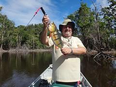 Amazonia 2012 (5)