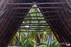 IMG_7285 (AlexDurok) Tags: ocean volcano islands waikiki snorkeling trail poke kauai waimea hanaleipier honolulu bigisland hilo maunakea hawai princeville keebeach ohau kailuakona napalicoast alamoanabeachpark lawai blacksandbeach diamondheadcrater dolphindiscovery kalalautrail waimeacanyonstatepark wailuariverstatepark beachhouserestaurant keauhoubay portallenairport poipubeachpark southpointpark waipiovalleylookout spoutinghornpark captainjamescookmonument papakoleagreensandbeach hawaiʻivolcanoesnationalpark kealakekuabaystatehistoricalpark kaimubeachpark pu'uokilalookout awaawapunitrail hanaleibaybeachpark