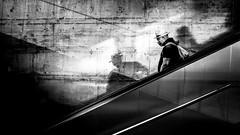 Into the world of shadows (Frank Busch) Tags: city shadow people blackandwhite bw man black monochrome germany munich blackwhite shadows escalator streetphotography hauptbahnhof downwards wwwfrankbuschname photobyfrankbusch imagebyfrankbusch wwwfrankbuschphoto