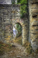 Ruins of fortress Achalm (malioli) Tags: autumn tree tower castle heritage history fall canon germany photography photo ruins pics fort path hill picture fortress hdr deuchland