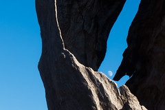 Moon tree (gstreech) Tags: colorado unitedstates northamerica picketwirecanyon comanchegrassland troop870