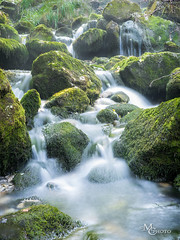 Moss and Foam (mcarroquino) Tags: water river spain silk pyrenees