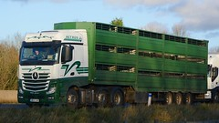 NK14 VUM (panmanstan) Tags: road england truck wagon mercedes motorway yorkshire transport lorry commercial newport vehicle livestock mp4 m62 haulage hgv actros