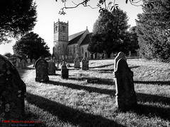 Evening Shadows (TDR Photographic) Tags: dorset england gussageallsaints thedorsetrambler uk church contrejour evening landscape light possibles sunset walking