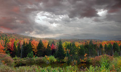 Alien Autumn (JellyBottom) Tags: rural forest misty cloud clouds cloudy dark stormy gloomy danger dangerous foreboding approach pond lake water secluded fall autumn color colors foliage brush edge new england america usa appalachian trail landscape nature outdoors hike journey travel go places secret magical awesome amazing wonderful beauty beautiful