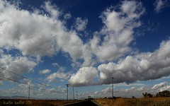 10-16-15 (454) Rain is Coming!! (KatieKal) Tags: california sanjoaquinvalley mercedwildliferefuge sanluiswildliferefuge canon60d canonlens18135mm