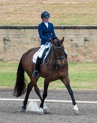 161023_Aust_D_Champs_Sun_Med_4.2_6200.jpg (FranzVenhaus) Tags: athletes dressage australia siec equestrian riders horses performance event competition nsw sydney aus
