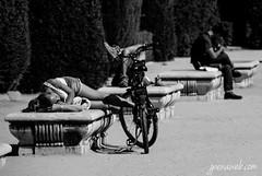 Siesta (jesus pena diseo) Tags: jpena jpenaweb jesuspenadiseo blackandwhite people women bicycle sun siesta dreams streetphotography madrid spain