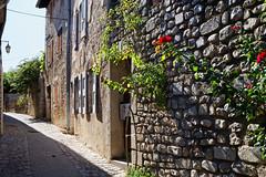 Vieilles rues de DIE 26150 France (elborma) Tags: die vieille rue maison murs pave