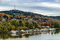 John's Landing from Sellwood Bridge (rowjimmy76) Tags: johnslanding portland willametteriver canon sigma18250mmf3563dcmacrooshsm landscape autumncolor fall hills city nature outdoors boats house water trees oregon pnw pacificnorthwest