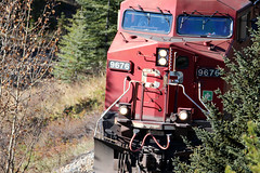 banff oct 2016 (vipermikey) Tags: banff banffnationalpark alberta canada castlemountain canadianrockies cp cprail canadianpacficrailway canadianpacific train freighttrain bowvalley bow valley parkway