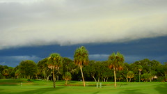 Shelf Cloud (Jim Mullhaupt) Tags: shelfcloud cloud storm clouds weather sky thunder outdoor wind rain wallpaper landscape bradenton florida manateecounty jimmullhaupt photo flickr geographic picture pictures camera snapshot photography nikoncoolpixp900 nikon coolpix p900 nikonp900 coolpixp900 weatherphotography cloudsstormssunsetssunrises