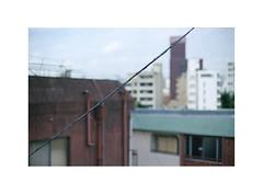 22 (LightWithoutHeat) Tags:   film japon japan nikonf5 135 c41 filmisnotdead analog argentique filmphotography imacon grainisgood fukuoka  roofs fujicolorc200