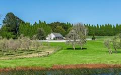 82 Ryans Lane, Wildes Meadow NSW