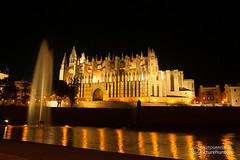 Kathedrale (Picturehunters) Tags: mallorca holidays spanien spain nacht beleuchtet lichter kathedrale palmademallorca hauptstadt fontne wasser spiegelung night