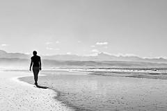Plettenberg Bay beach (David Pellicola) Tags: southafrica sud africa sudafrica nikon nikond810 d810 biancoenero blackwhite blackandwhite