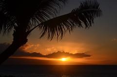last rays of the sun (ABI Imon) Tags: sunset maui cloud beach pacific tree coconut color ray kaanapali lahaina