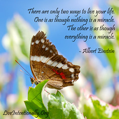 quote-liveintentionally-there-are-only-two-ways (pdstein007) Tags: quote inspiration inspirationalquote carpediem liveintentionally