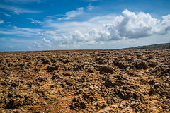 20141106_Urlaub-Curacao_N812779.jpg (potto1982) Tags: jahr nikon karibik datum nikond810 caribbean d810 curaçao 2014