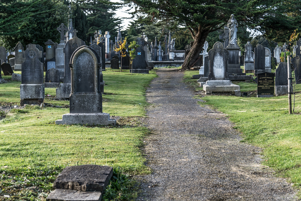A QUICK VISIT TO GLASNEVIN CEMETERY[SONY F2.8 70-200 GM LENS]-122066
