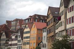 IMG_3325 (downatthezoo) Tags: badenwuerttemberg tuebingen deutschland