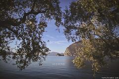 Isola di San Paolo vista da Monte Isola (Matteo Rinaldi.it) Tags: isoladispaolo monteisola lagodiseo autunno olivi stampa