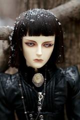 001 (Kumaguro) Tags: bjd dollshe husky dollshehusky dollsheoldhusky autumn earlywinter dark gothic