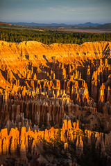 Bryce Canyon (joshbousel) Tags: bryce brycecanyon brycecanyonnationalpark brycepoint hoodoo hoodoos nationalpark northamerica places travel unitedstates unitedstatesofamerica usa ut utah