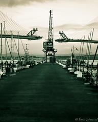 PORT EDGAR (buddsnax) Tags: bridge queensferrycrossing scotland southqueensferry edinburgh portedgar crane balancedcantilever cablestayedbridge unitedkingdom marina boats