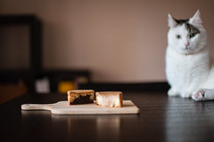 Otake Manju | Lou (Nazra Z.) Tags: japanese sweets cake manju 大判焼き okayama japan 2016 raw food desserts earlysummer munchkin cat tabby male dining table