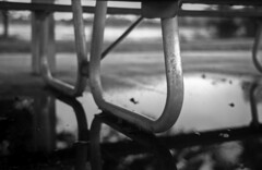 Park Puddle (PositiveAboutNegatives) Tags: kievii rangefinder kiev2 contaxii film analog adox cms20 wideopen f20 jupiter8 50mm sonnar johnprincememorialpark bokeh coolscan bw blackandwhitefilmphotography