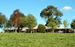 1298 Burra Rd, Gundagai NSW