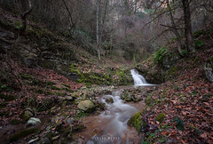 Into the wood (michelangelo_84) Tags: nikon d5100 spain espaa water agua river forest wood autumn fll otoo rio cascada waterfall leaf color colorful colores vida bosque le longexposure largaexposicion larioja sigma1020f4 silk silky seda daylight nd nd64 neutraldensity densidadneutra dreamscape nature naturaleza