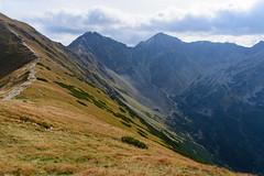 Widok z Rakonia na Rohacze i Smutną Dolinę
