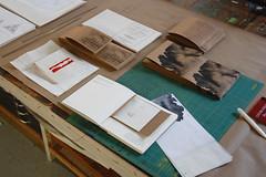 Phyllida Bluemel in the Studio (Women's Studio Workshop) Tags: bookarts bookbinding bookmaking printmaking prints silkscreen screenprinting screenprint artistresidency artistsbookresidency