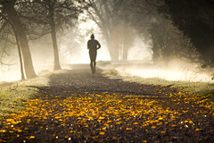 Early morning (Roberto Spagnoli) Tags: mattina morning corsa run running nature correre autunno autumnleaves fall autumn nebbia fog gold oro explore