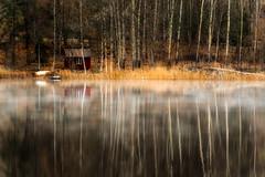 All I need (PixPep) Tags: vrmeln brunskog arvika sverige vrmland sweden reflections trees mist