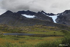 Glaciers in Thompson Pass (Alfred J. Lockwood Photography) Tags: alfredjlockwood landscape nature mountain chugachmountains thompsonpass glacier pond tundra cloud morning summer alaska valdez overcast