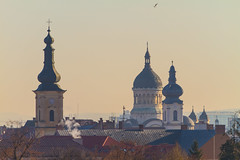 Cathedral spires (Raoul Pop) Tags: rooftops morning flight horizon spires bird towers architecture cityscape cluj cathedrals sky winter clujnapoca transilvania romania ro