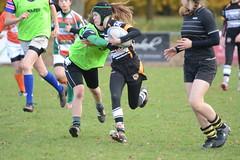 DSC_8890 (mbreevoort) Tags: rfchaarlem rugby rcthedukes brcbreda dioklrc thepickwickplayersdrc hookers goudarfc