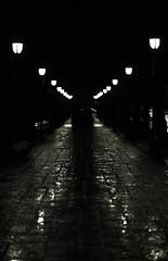 Lights reflection (Tonca Photography) Tags: monochrome black white oslo street dark night lights light rainy