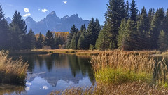 Teton Reflection  (LG G4) (Jeffrey Sullivan) Tags: travel lg g4 mobile phone camera images smartphone cellphone california usa photo copyright 2015 jeff sullivan september road trip grand teton national park wyoming