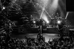 Delain (Marisela Morales Photography) Tags: delain delainband delainlive delainlondon mariselamoralesphotography mkmoralesphotography mkamoralesphoto headliner dutchband charlottewessels martijnwesterholt timosomers rubenisrael merelbechtold ottovanderoije livemusic live livemusicphotography music musicphotography musicphotographer band blackwhite bandphotographer bandphotography gig gigphotography concert canoncamera canonphoto concertphotography canoneos70d camden koko kokocamden london livephotos londongig lights symphonicmetal photography photopass crowd vocalist photopit