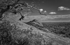 Enchanted Rock, TX (sbmeaper1) Tags: hdr enchanted rock state park texas tx black white