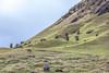 Rano Raraku - Chile, Rapa Nui (acseven) Tags: volcano chile easter island ocean pacific polynesian rano raraku rapa nui south america unesco ancient grass heritage hill horse landscape rock statue