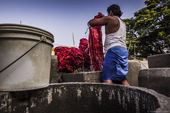 Dhobi @ work (anandgovindan) Tags: life street morning travel blue red portrait sky people stilllife india colour water work canon colorful day outdoor vibrant ngc madras wideangle cleaning tokina clothes clean laundry adobe splash chennai hardwork washing journalism tamilnadu slog southindia lightroom lowangle vibrance twop dhobi cwc hardship cleanse ultrawideangle 1116mm nammachennai tokina1116mm canon600d chennaiweekendclickers dhobikhana vannar kosapet mychennai anandgoviphotography anandgovindan cwc477a