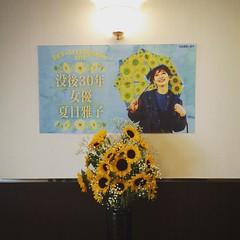 「没後30年 女優・夏目雅子」を観にきました。今日は代表作の「鬼龍院花子の生涯」と「時代屋の女房」です。 #映画 #eiga #cinema #早稲田松竹 #夏目雅子 #高田馬場 #新宿区