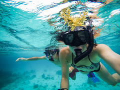 Snorkling in Belize (megisaweirdo) Tags: ocean blue sea reflection water swimming swim underwater extreme adventure explore snorkling caribbean wandering snorkle wander waterproof gopro