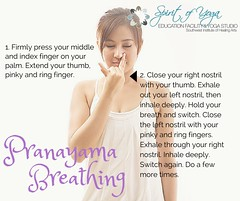 pranyama (swihasocial) Tags: work nose calm nostril serenity breathe nasal breathing stressrelief pranayama professionalgrowth